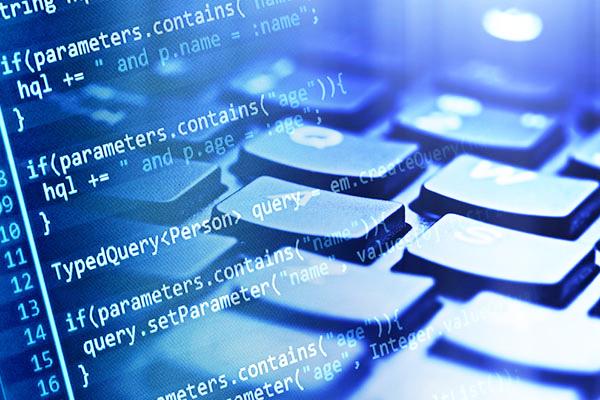 Software-Company-Registration