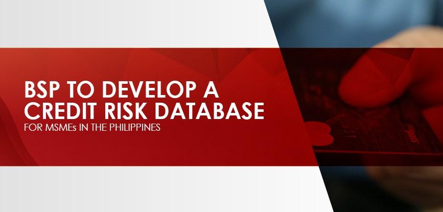 BSP Credit Risk Database-min