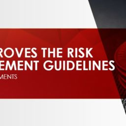 Risk Management Guidelines-min