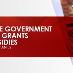 Grants and subdidies startups-min