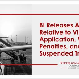 BI Advisory Visa Application