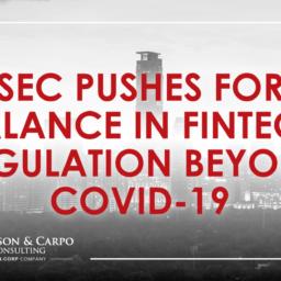SEC Fintech min
